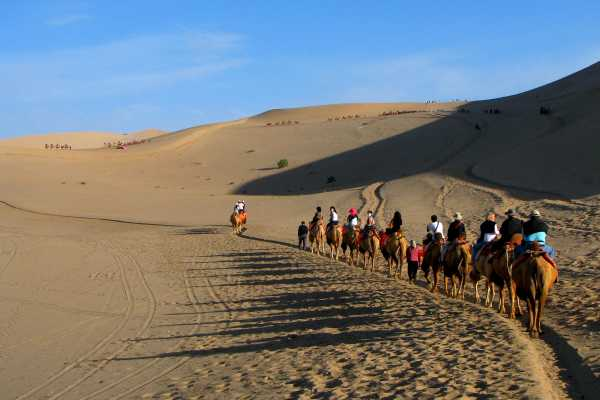 Camel tourists in the Dunhuang desert
