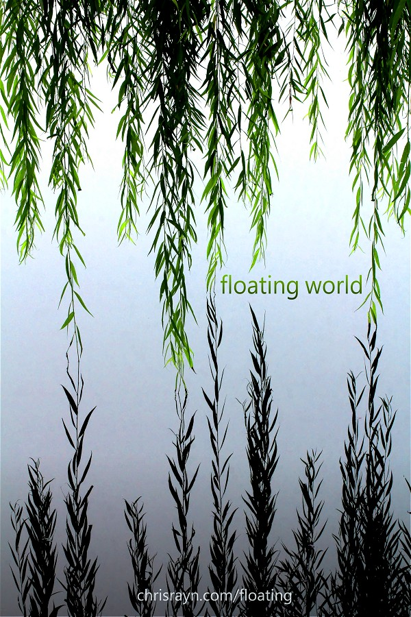 Floating World - Poster